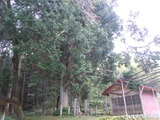 2011_09_26 032