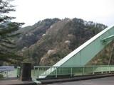 羽衣崎橋と山桜