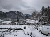 今日は大雪!