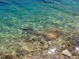 GL15 Lake2