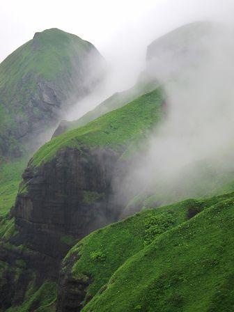 ガイド報告「花の礼文島桃岩ハイキングと利尻山登頂」