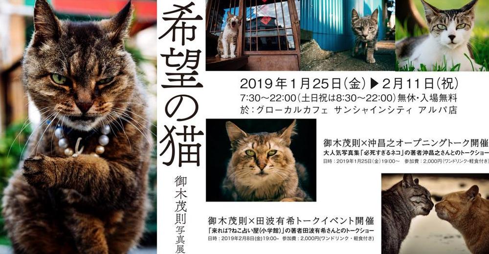 「希望の猫」写真展のご案内!