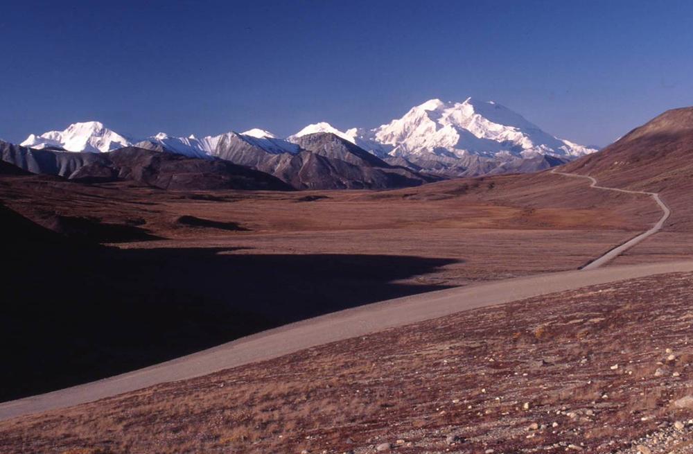 デナリへの道 004はじめてのアラスカ1996