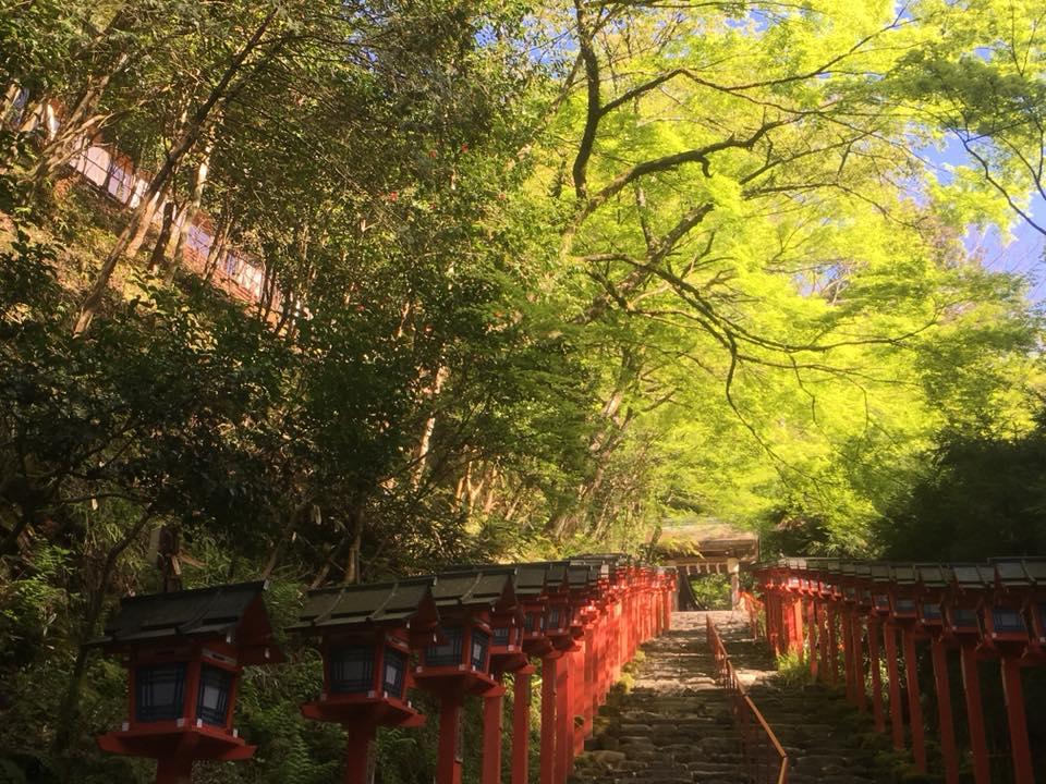 京都トレイル 京北 峠越え