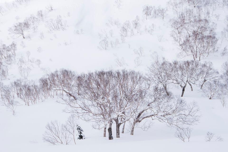 雪の中の世界