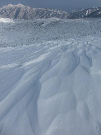 本日の雪景色。樹氷!蔵王!