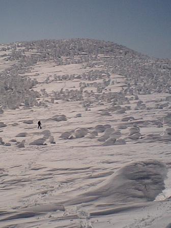 本日は百名山、西吾妻山登頂と山上の樹氷!