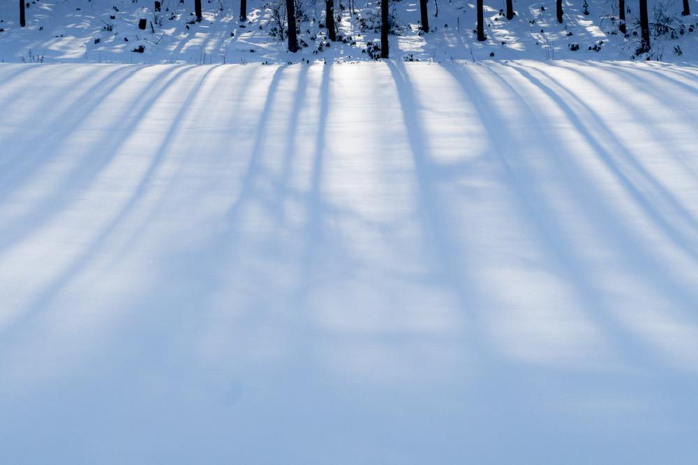 やさしい雪の大地