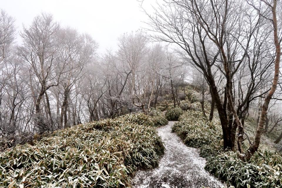 霧氷の赤城山