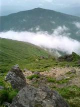 山旅実況生ブログ「花の山、早池峰」