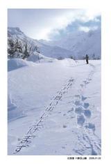 ダイセツ(大雪)の山麓でスノーシュー