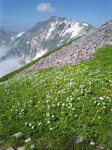 山旅実況生ブログ「これぞアルプス」