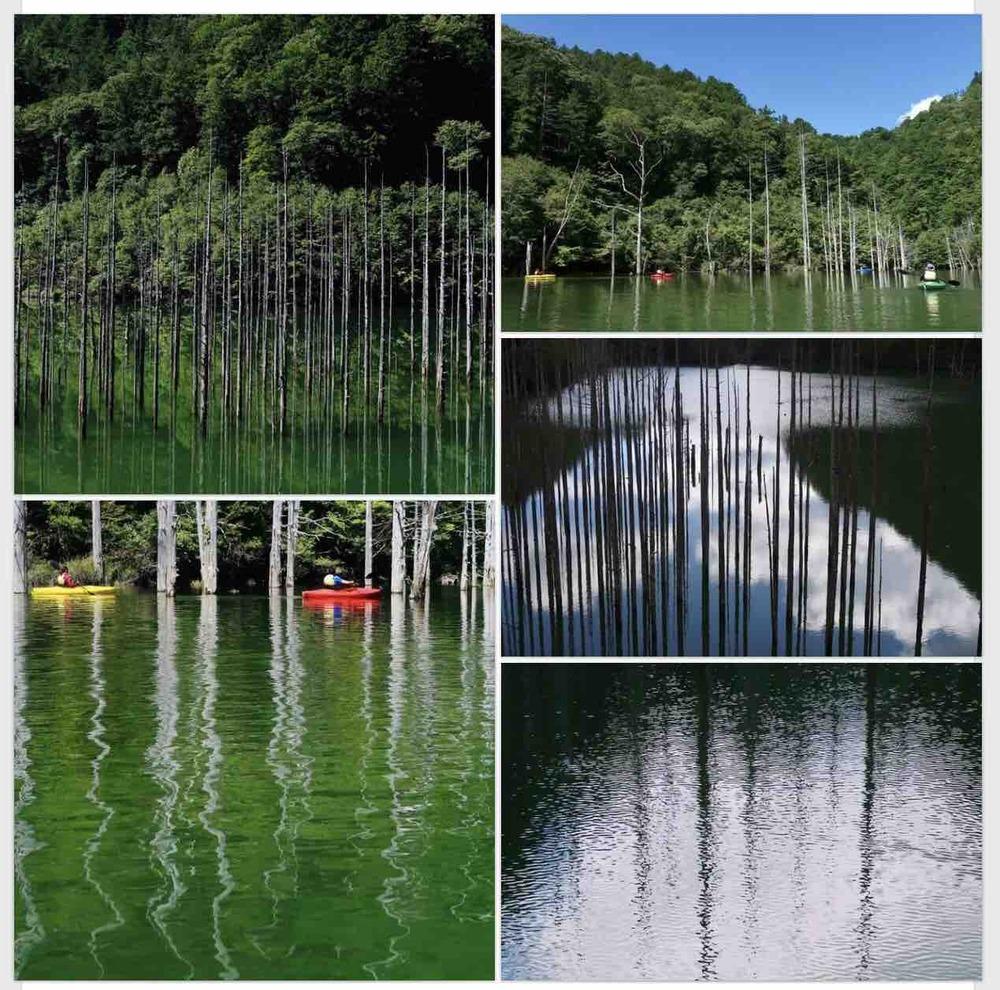自然湖でカヌー!