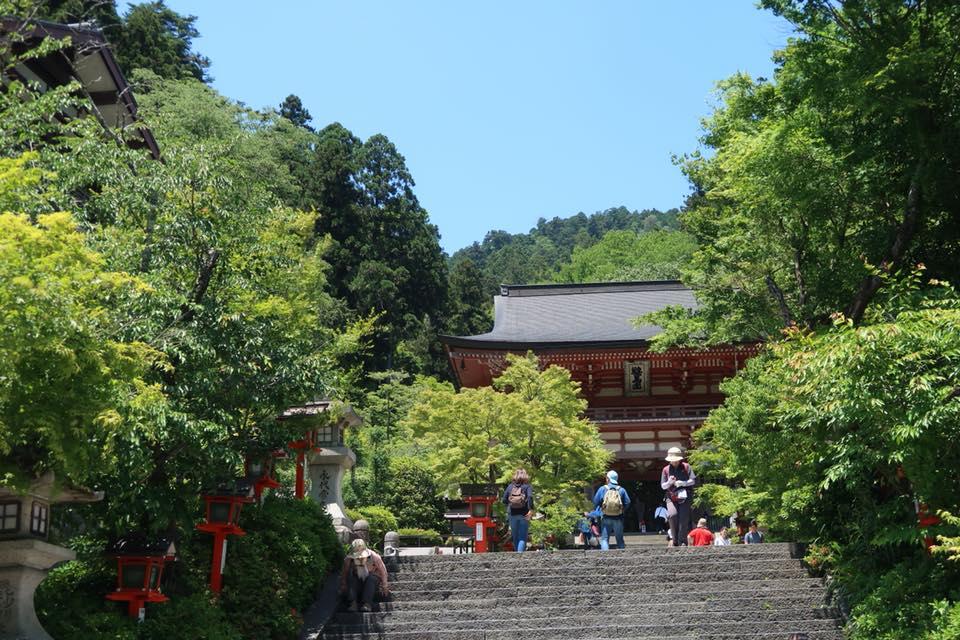 京都トレイルについて!