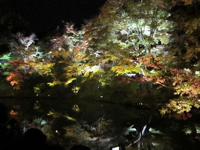 京都一日目 夜の京都