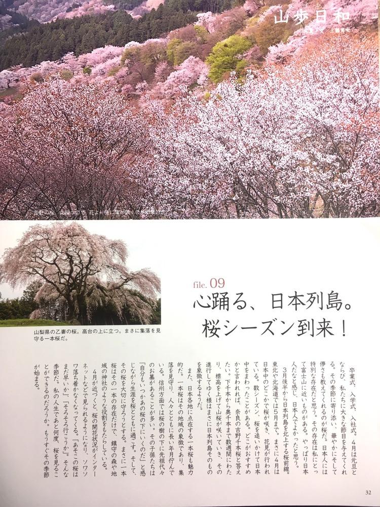 日本の自然風景&絶景紹介中!今回は桜