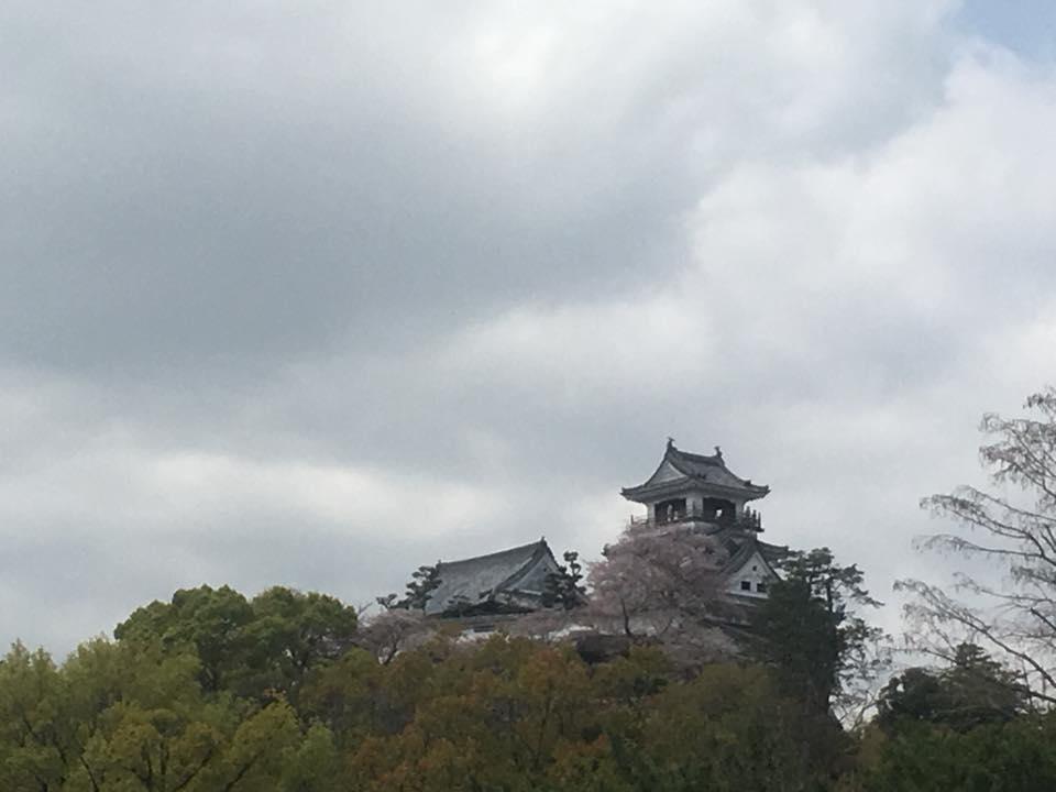 高知から香川へ
