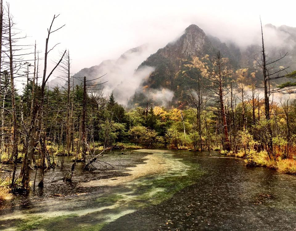 雨の上高地 岳沢湿原