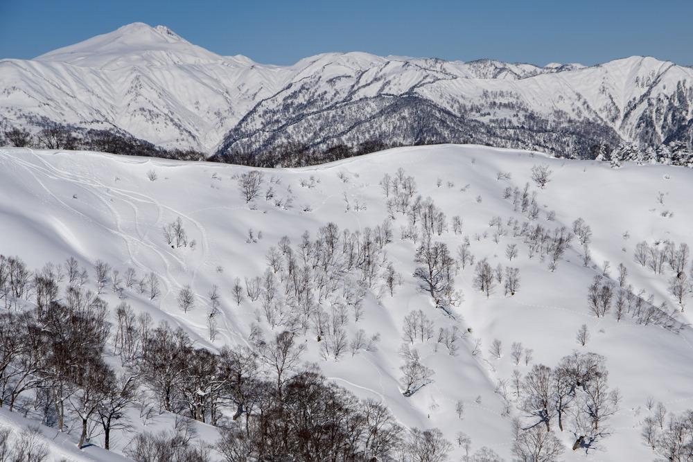 雪の岐阜、大日ヶ岳《美しい日本の風景》