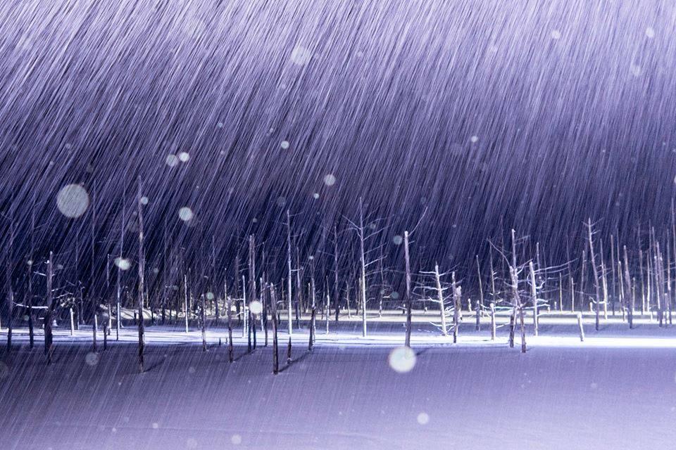 冬の青い池 ライトアップ《美しい日本の風景》
