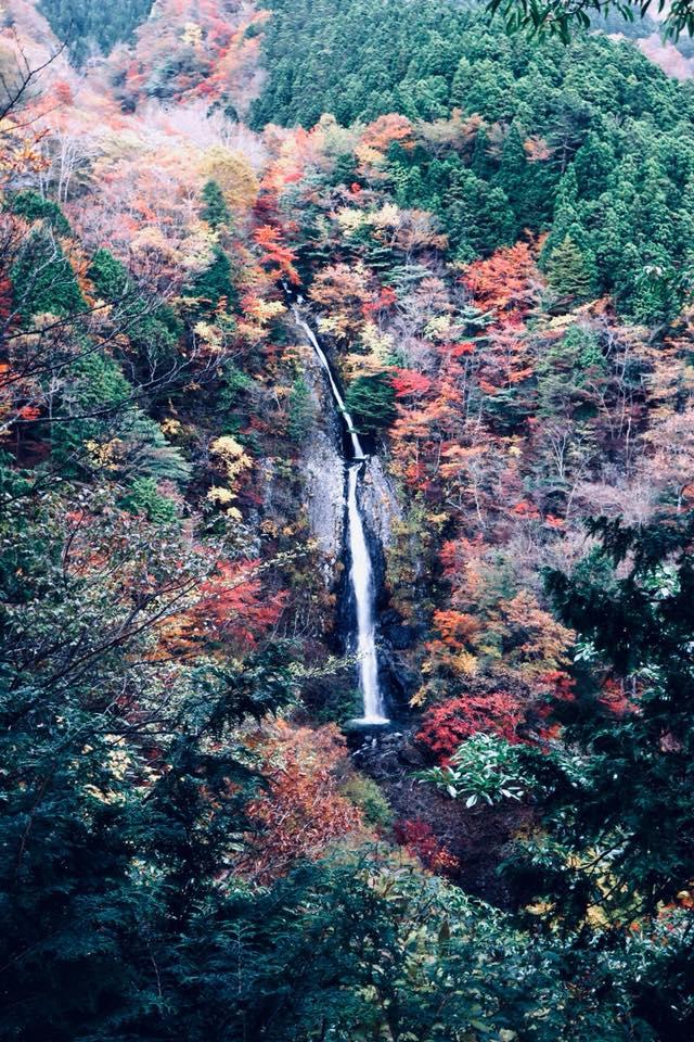毛無山 不動の滝