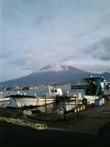朝の漁港と桜島