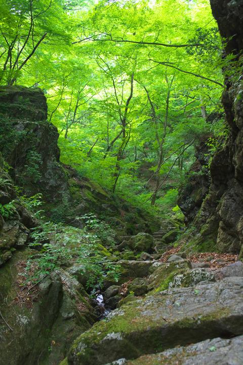 130525_御岳山ハイキング060_01_01