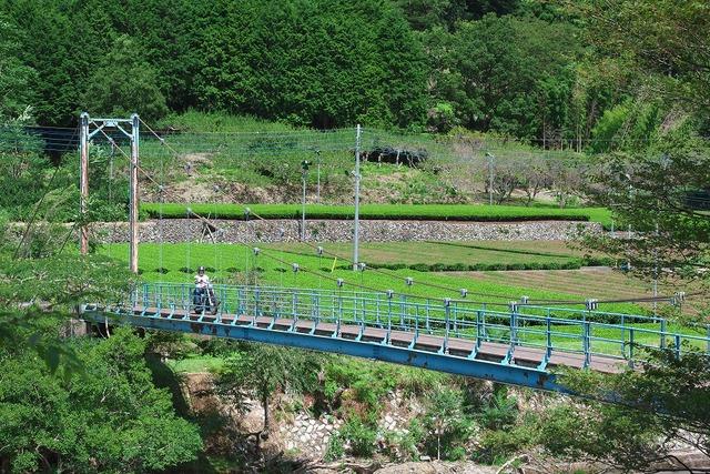 210811_吊橋MIW021s