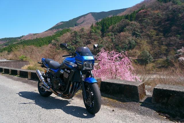 200326_長尾峠・須走・丹沢湖23s