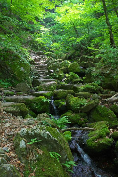 130525_御岳山ハイキング075_01