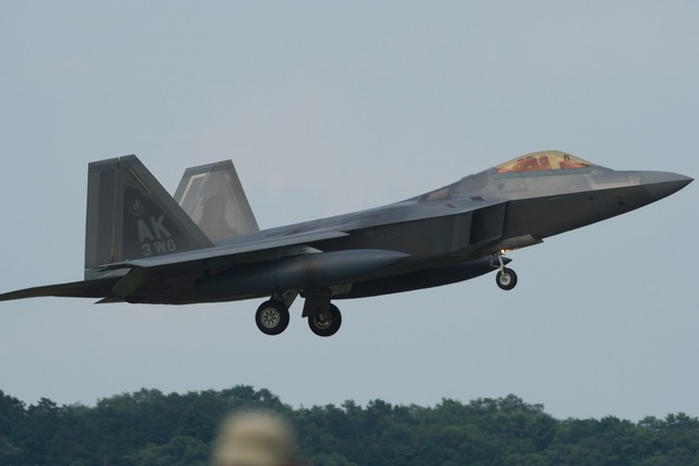 180714_D50_F-22 Raptor057s