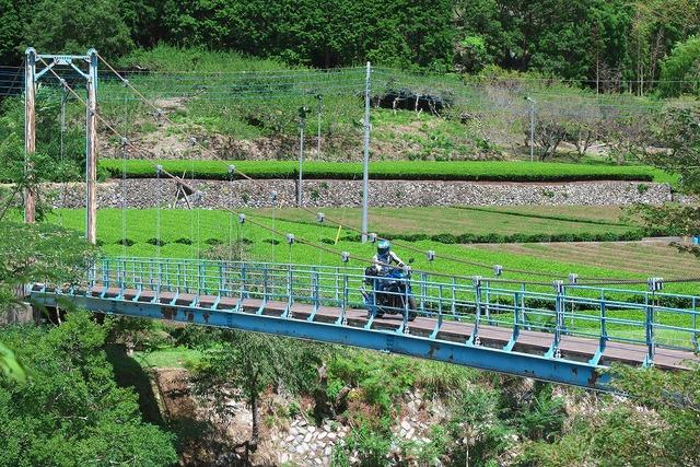 210811_吊橋DAEG018s