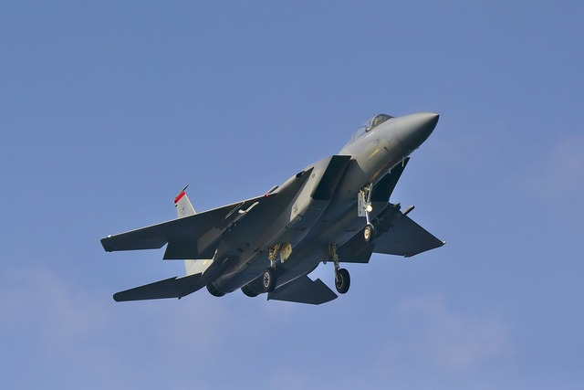 150111_F-15(嘉手納基地)242