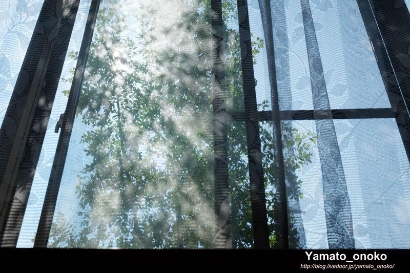 160627-window