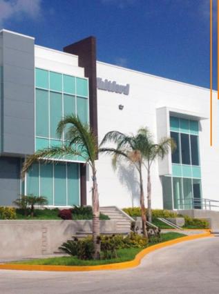 メキシコとオランダのオフィスが移転します!