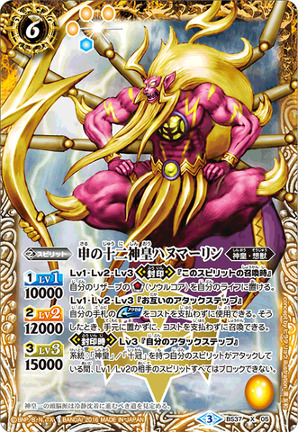 card_y01