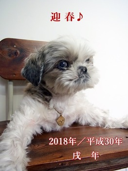 sozai168