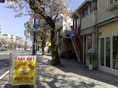 ロードバイクツーリング桜、根岸、本牧 (5)s