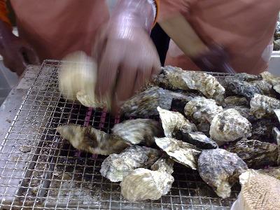 石川県の牡蠣