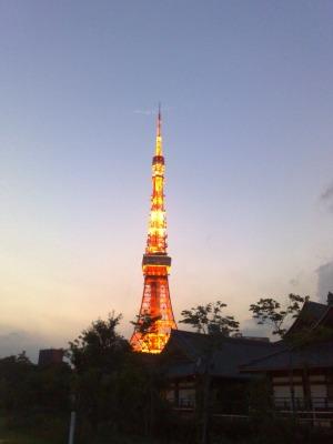 東京タワーのよく見えるところ