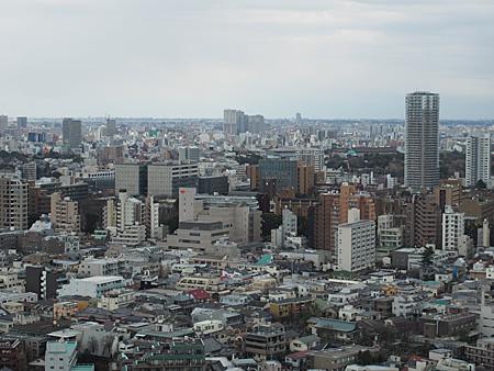中央に東京大学、その後方に上野公園(博物館の屋根が見える)。