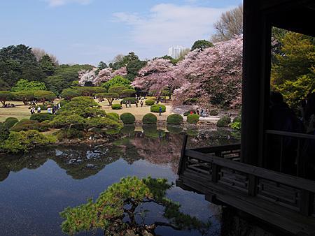 台湾閣から日本庭園