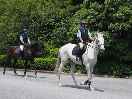 皇居警察騎馬隊