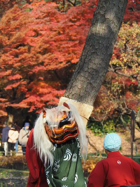 江戸太神楽の獅子舞