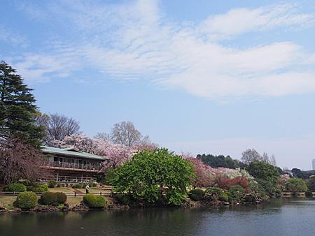 中の池レストハウス