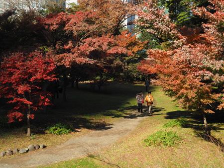 芝離宮の紅葉が微妙なモミジ