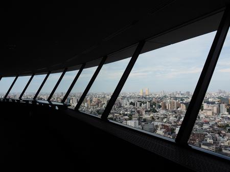 25階からの展望
