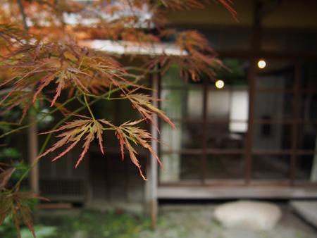 茶室であるという陽月亭なる建物