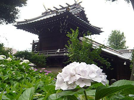 白山神社 公園
