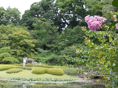 皇居二の丸庭園